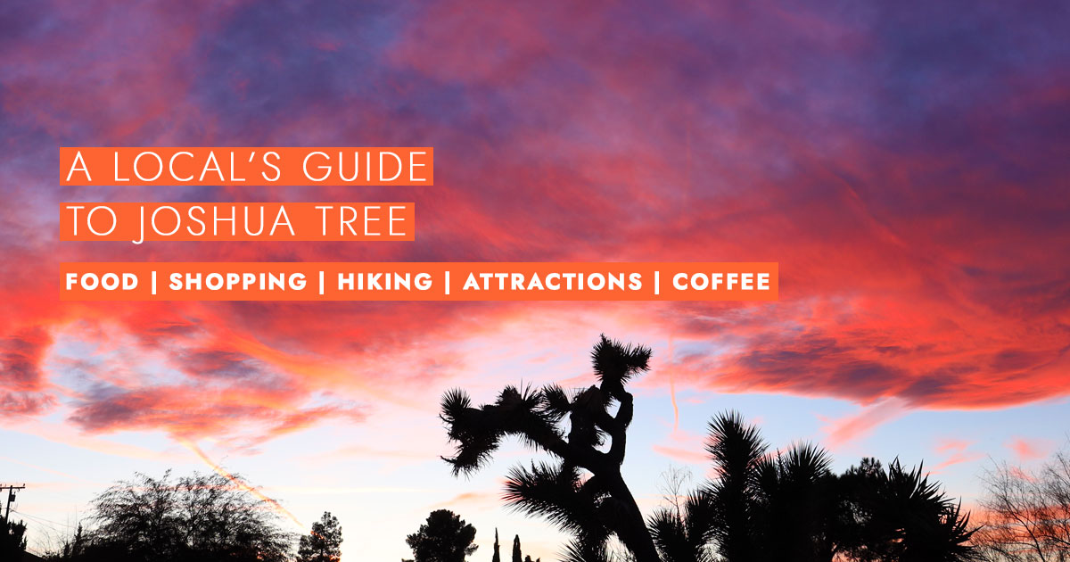 Local's Guide to Joshua Tree
